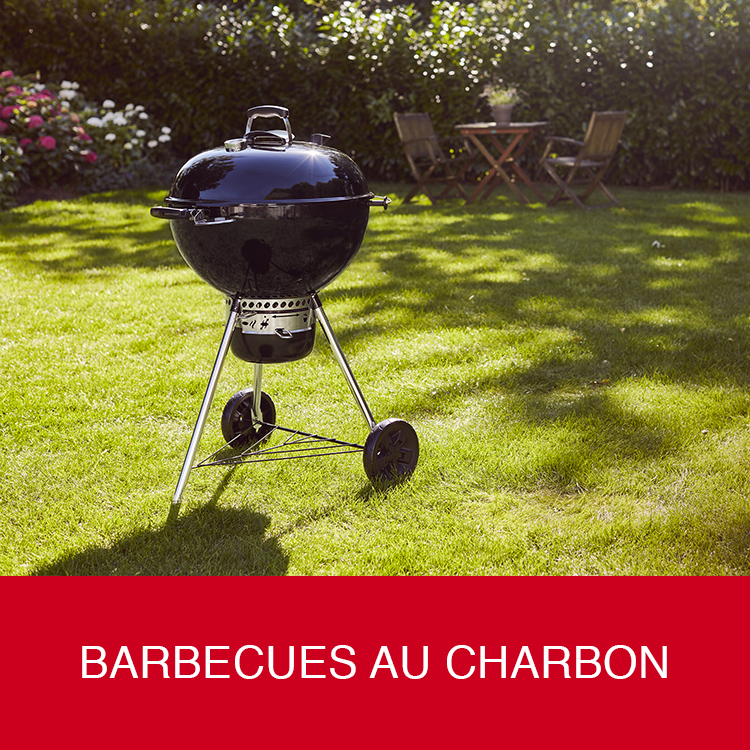 Barbecue au charbon Weber