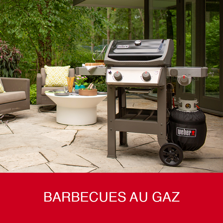 Barbecues au gaz Weber