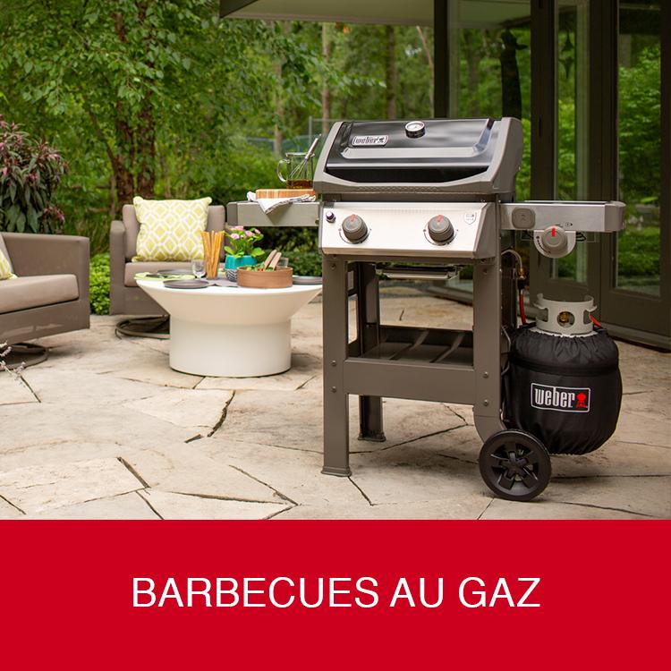 Barbecues au gaz Weber