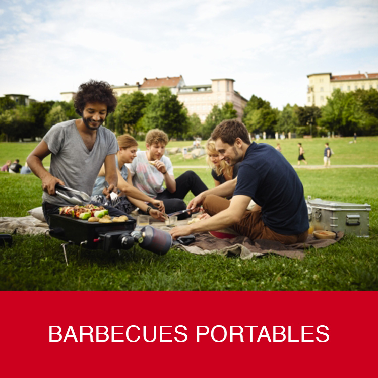 Barbecues portables weber